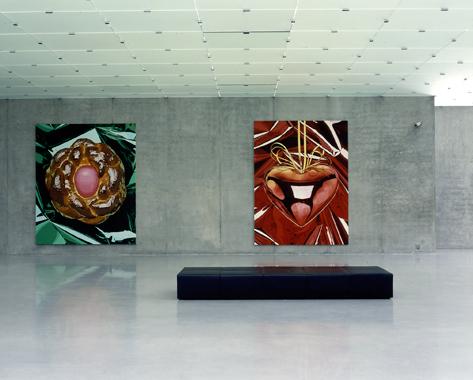 Jeff Koons. Kunsthaus Bregenz, Bregenz, Austria [July 18 - September 16, 2001]