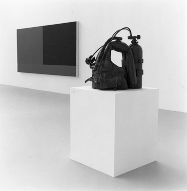 Jeff Koons. NY Art Now, The Saatchi Collection, London, 1987-1988.