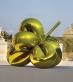 Balloon Flower (Yellow)