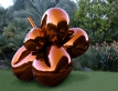 Balloon Flower (Orange)